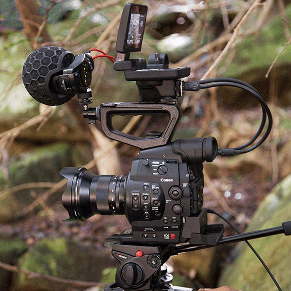 Rode_Stereo_VideoMic_X_beispiel_a.png